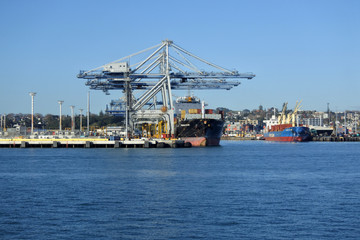 Ports of Auckland New Zealand