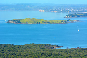 Landscape view of Browns Island New Zealand