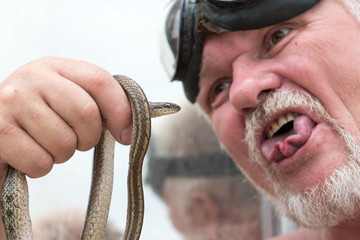 Elderly man with beard and mustache is engaged in dialogue with snake. Steppe Ratsnakes Elaphe dion. Beautiful skin pattern, fascinating movements, poses. Snake water reptile. Shallow selective focus