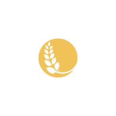 Wheat farming logo vector design template