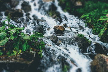 River with rocks and moss with small waterfall in the summer forest