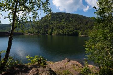 Lac d'Alfeld in den Vogesen