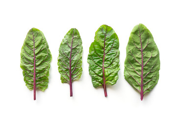 Isolated mangold beet fresh green leaves. Healthy food salad. Top view.
