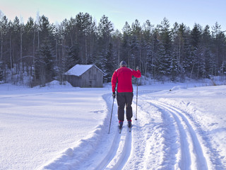 Man doing Nordic cross-country skiing on a classical style track. Beautiful sunny day for winter sports.