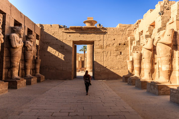 Ancient ruins and hieroglyphs at Karnak Temple, Luxor, Egypt. Ancient and important statue in the temple of Karnak in Egypt.