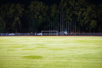 Beautiful green grass ground in a stadium.