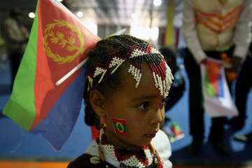 Child wears the Eritrean national flag during a concert at the Millennium Hall in Addis Ababa