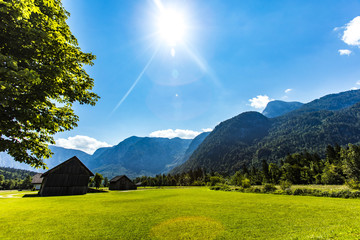 beautiful alps nature background in summer