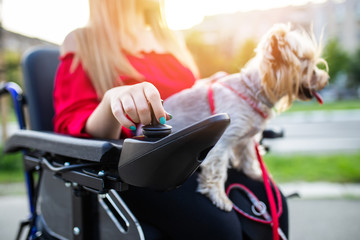 Beautiful young woman on a wheelchair enjoying outdoors with her dog. Fotoväggar