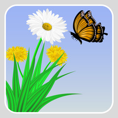 Vector image of realistic flowers of chamomile and dandelion in grass and butterflies flying in the sky.