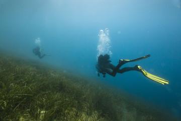 Spoed Fotobehang Duiken Underwater diving