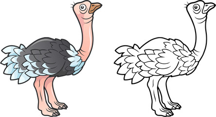 cartoon cute ostrich, funny illustration, coloring book
