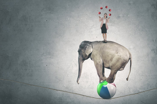 Caucasian businesswoman with balls and elephant