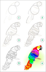 Page shows how to learn step by step to draw a cute parrot. Developing children skills for drawing and coloring. Vector image.