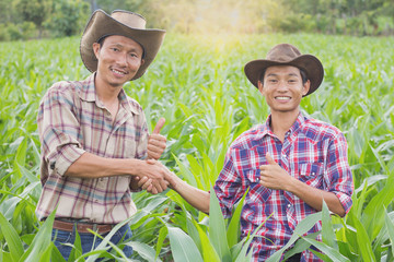 Two farmer standing and shaking hands at the Corn farm,Concept of agricultural cooperation