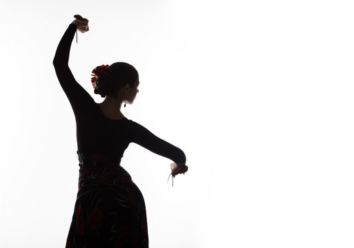 silhouette of spanish girl flamenco dancer on a light background. free space for your text