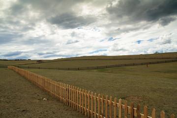 pasture Peaceful Mongolia