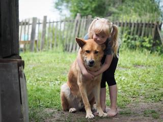 A little girl hugging a huge dog. Child in the village yard