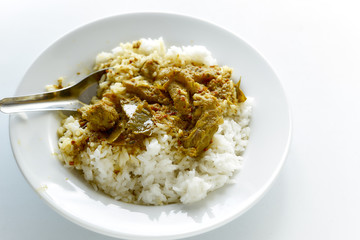 Thai food Rice and Curry with roasted pork