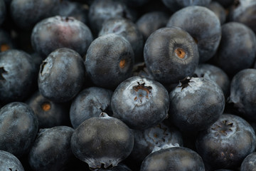 Surface coated with the blueberries