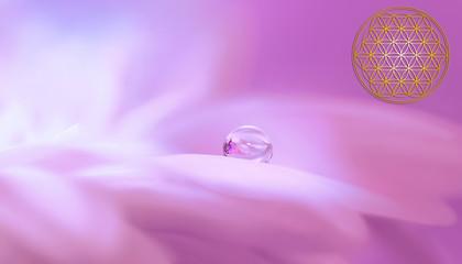 Blume des Lebens - Leichtigkeit