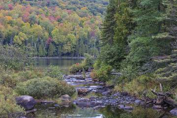 A creek flows into Lake Bouchard in La Mauricie National Park, Québec, Canada