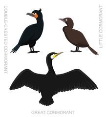 Bird Cormorant Set Cartoon Vector Illustration