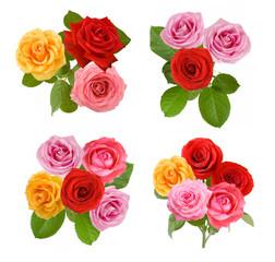 beautiful roses bunch