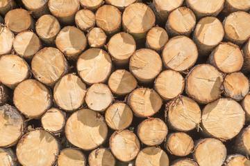 Holzlager-Textur