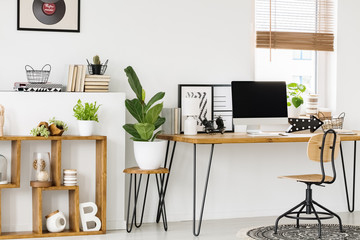 Plant on stool next to wooden desk with computer desktop in white workspace interior. Real photo