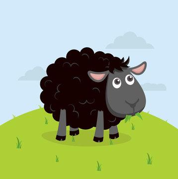 Cute Black sheep eat grass cartoon