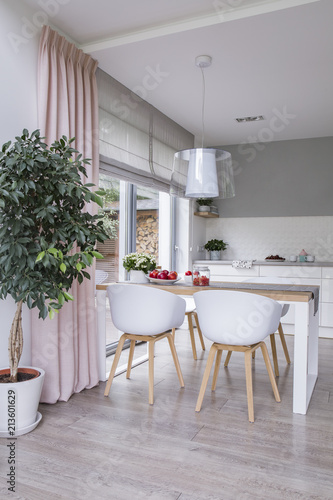 White Chairs At Table In Modern Dining Room Interior With Plant And Pink Drapes Real