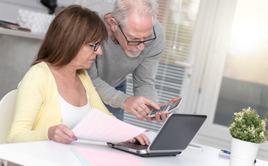 Senior couple checking financial document