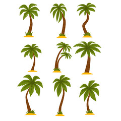 Flat vector set of cartoon tropical palms. High trees with long green leaves and brown trunks. Elements for mobile game or print