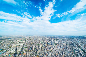 Wall Mural - Asia Business concept for real estate and corporate construction - panoramic modern city urban skyline bird eye aerial view under sun & blue sky in Tokyo, Japan