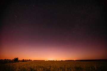 Natural Night Starry Sky Above Summer Field Meadow. Glowing Stars