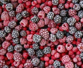 closeup of frozen berries