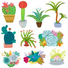 Cactus vector botanical cacti potted cute cactaceous succulent plant botany illustration floral set of cartoon exotic flowers isolated on white background