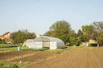 Greenhouse polytunnel buildings