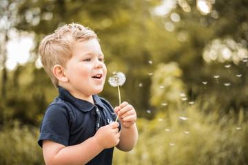Junge mit Pusteblume hat Spaß in der Natur