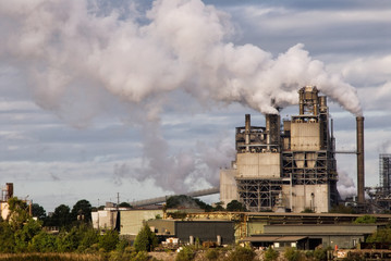 Landscape of a Paper Mill on Sunny Day