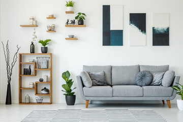 Elegant living room interior with a grey sofa, wooden shelves, plants and paintings on the wall