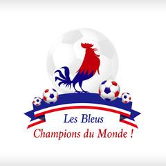 Les Bleus Champions du Monde de foot