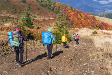 Group of tourists are trekking in the mountain.