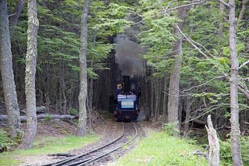 The Southern Fuegian Railway, Ushuaia, Argentina