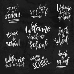 Welcome Back to School chalk lettering on blackboard. Vintage Calligraphic Design Label On Chalkboard. Vector Logo Set