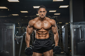 A handsome male athlete is a bodybuilder, weightlifter, doing exercises for the development of triceps muscles, exercising on a simulator in a modern gym.