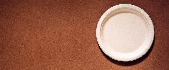 Biodegradable and compostable disposable molded fibre plate