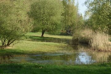 Stores à enrouleur Nature nieuw waterrijk natuurgebied bij de Grote Beek in de Achterhoek in het voorjaar