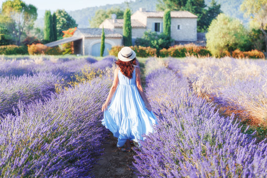 Beautiful young woman walking the field of lavender in Provence, France, national park Luberon. Fashion outfit blue dress, straw hat. Back view. Traditional house in background. Violet in nature.